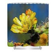 Cholla Flower H40 Shower Curtain