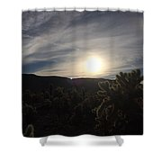Cholla Sunset Shower Curtain