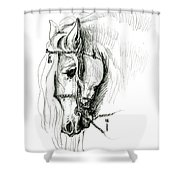 Chomping At Bit - Sketch1 Shower Curtain