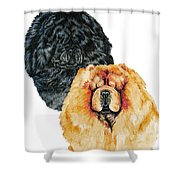 Chow Chows Shower Curtain