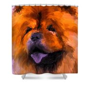 Chow Portrait Shower Curtain