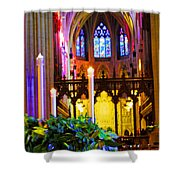 Christ Is Born Travel Shower Curtain