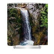 Christine Falls Mt Rainier Shower Curtain
