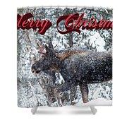 Christmas Bull Moose Shower Curtain