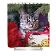 Christmas Cat Shower Curtain