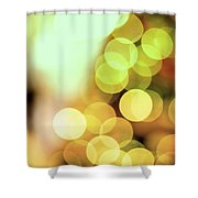Christmas Decorations 3 Shower Curtain