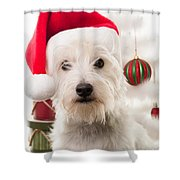 Christmas Elf Dog Shower Curtain