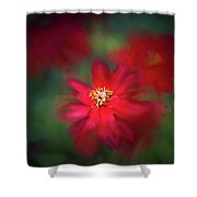 A Flowerr For Christmas Shower Curtain