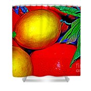 Christmas Fruit Shower Curtain