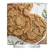 Christmas Gingerbread Cookies Shower Curtain