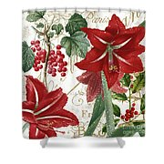 Christmas In Paris II Shower Curtain