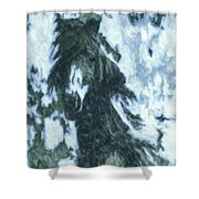 Christmas In Tesuque Shower Curtain