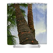 Christmas Lights On Palm Trees Shower Curtain