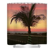 Christmas Palm Shower Curtain