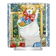 Christmas Stocking Shower Curtain