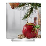 Christmas Tree Branch And Decoration In A Vase Shower Curtain