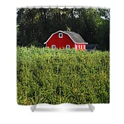 Christmas Tree Farm Shower Curtain