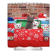 Christmas With Kittens Shower Curtain