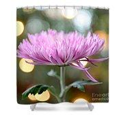 Chrysanthemum Happiness Shower Curtain