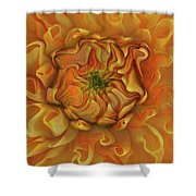 Chrysanthemum Shower Curtain
