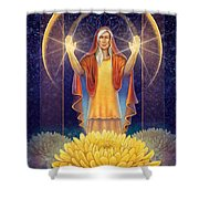 Chrysanthemum - Light In The Darkness Shower Curtain