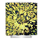 Chrysanthemum Pop Shower Curtain