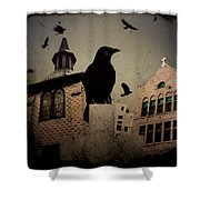 City Church Crows Shower Curtain