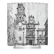 Church In Queretaro, Mx Shower Curtain
