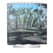 Cimmeron Grasslands Shower Curtain