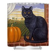 Cinder The Cat Shower Curtain