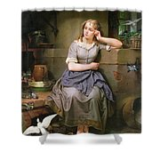 Cinderella And The Birds Shower Curtain