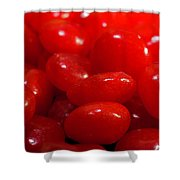 Cinnamon Candies Shower Curtain