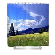 Cinquefoil Blossoms Shower Curtain