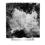 Circling Overhead Shower Curtain