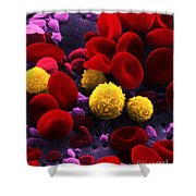 Circulating Human Blood, Sem Shower Curtain by Omikron