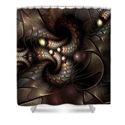 Circumstance And Puzzlement Shower Curtain