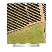 Citrus Farms In Moroccos Productive Shower Curtain