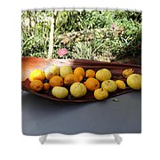 Citrus Fruits Shower Curtain