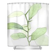 Citrus Sapling Shower Curtain