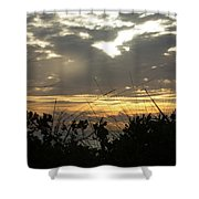 City Beach Seaside Shower Curtain