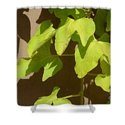 City Leaves Shower Curtain