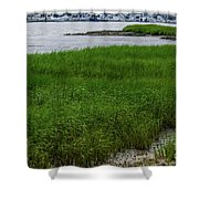 City Marina Marsh View Shower Curtain