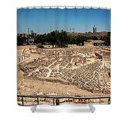 City Of King David Shower Curtain