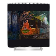 City Of New Orleans Shower Curtain