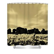 City Of Rocks S Shower Curtain