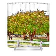 City Park 9 Shower Curtain