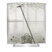 Clamming Shower Curtain