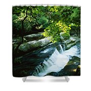 Clare Glens, Co Clare, Ireland Shower Curtain