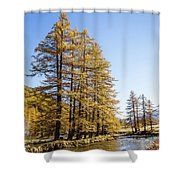 Claree Valley In Autumn - 1 - French Alps Shower Curtain