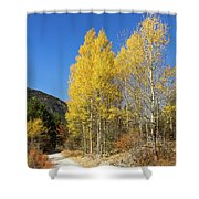 Claree Valley In Autumn - 11 - French Alps Shower Curtain